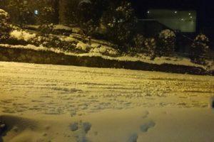 1391956519418 300x200 - 東京大雪弊社前、雪だるまはつくりませんでした。