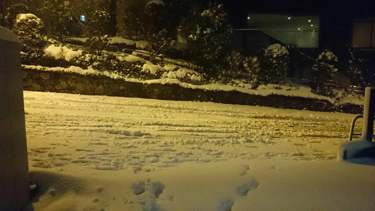 1391956519418 - 東京大雪弊社前、雪だるまはつくりませんでした。