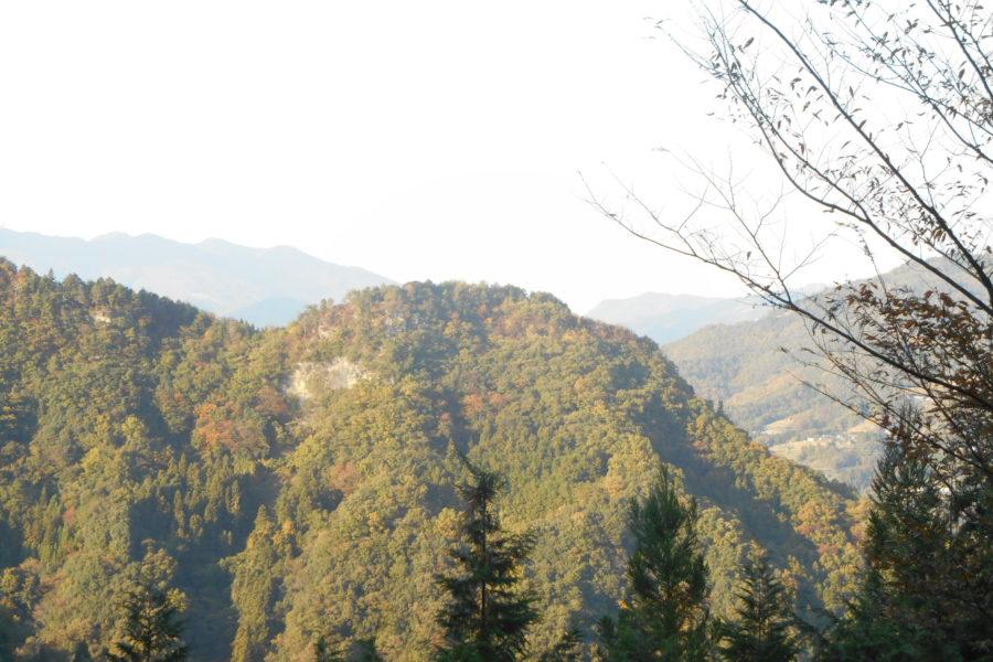 DSCN2183 1 900x600 - 2016年11月 剣山を訪ね、女神の遊雅さを楽しむ女神ツアー