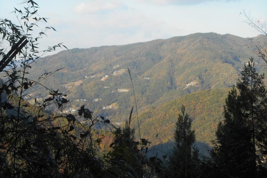 DSCN2184 1 900x600 - 2016年11月 剣山を訪ね、女神の遊雅さを楽しむ女神ツアー