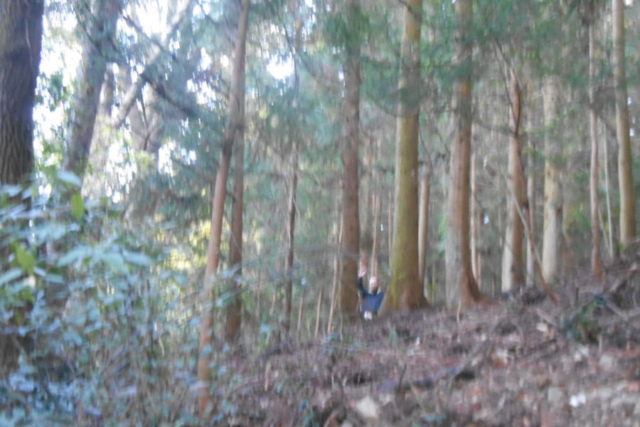 DSCN2192 1 900x600 - 2016年11月 剣山を訪ね、女神の遊雅さを楽しむ女神ツアー
