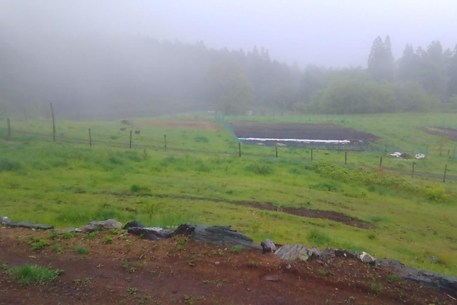18472397 1536161156470562 744951903 o 900x600 - 群馬の大自然と共に創るDASHA村の様なプロジェクト