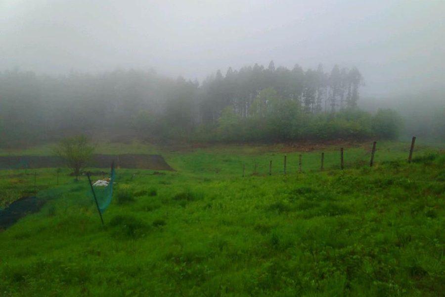 18492114 1536157643137580 2021916414 n 900x600 - 群馬の大自然と共に創るDASHA村の様なプロジェクト