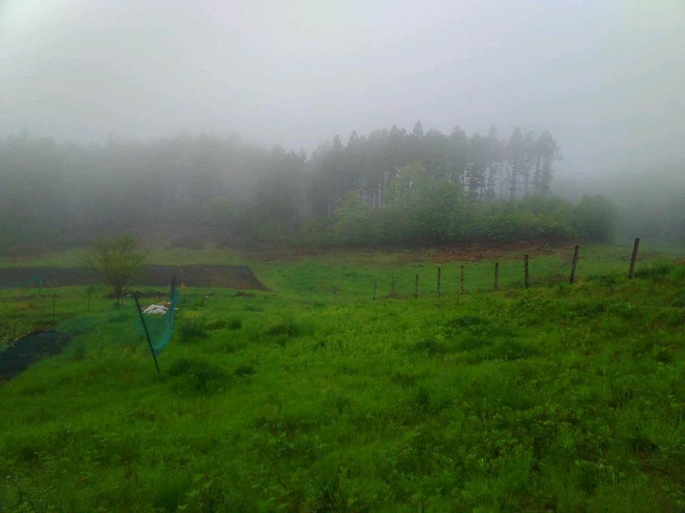 18492114 1536157643137580 2021916414 n - 群馬の大自然と共に創るDASHA村の様なプロジェクト