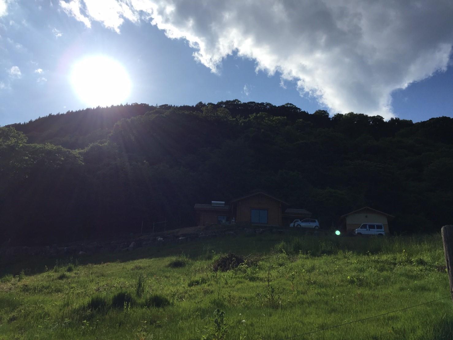 4673ac467c13f6d72904c57df008fea1 - DASHA村の様なプロジェクト(群馬県神流町農場)