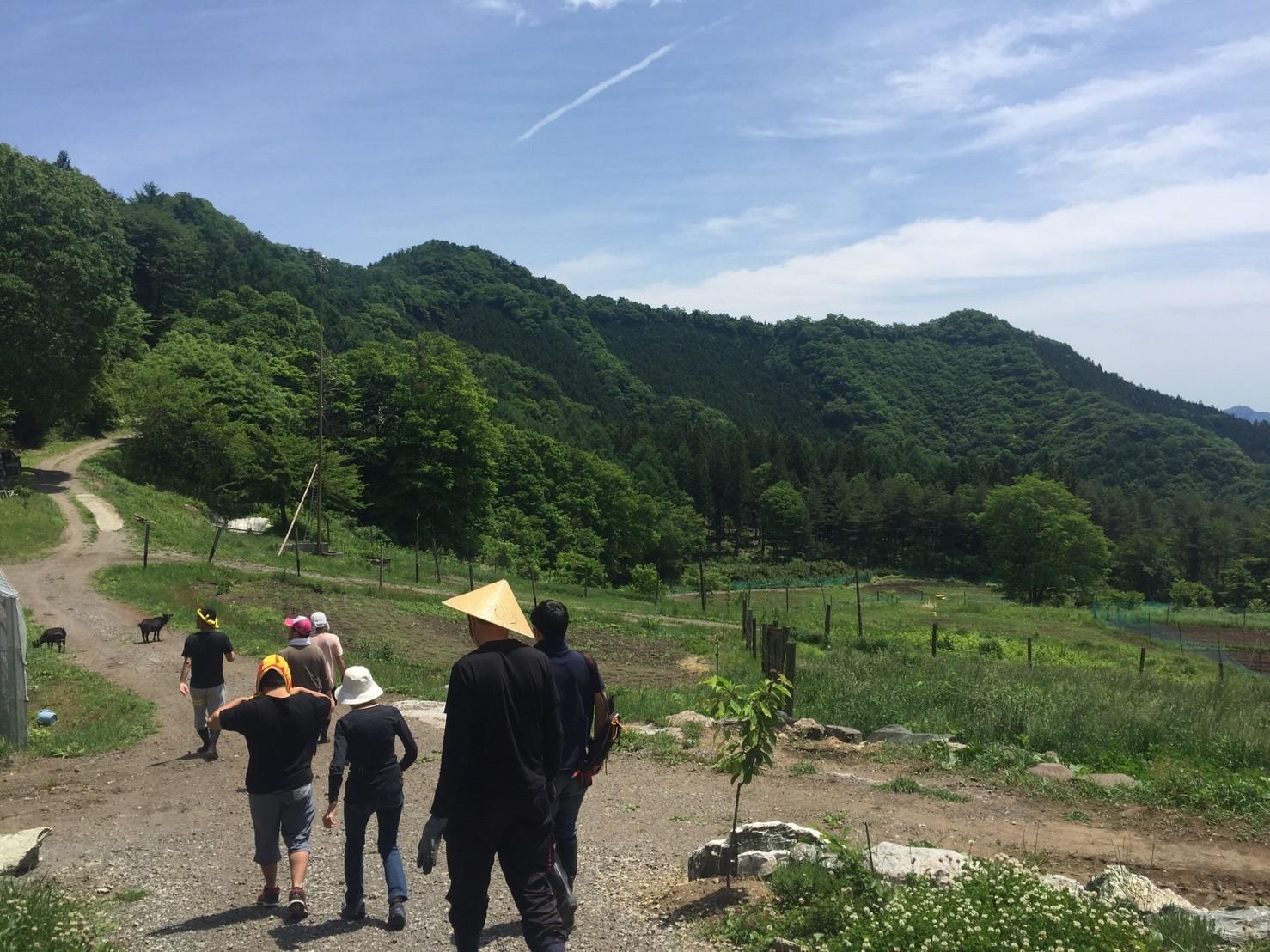 6b39b834521ade4c32d772d1fbd4ff14 - DASHA村の様なプロジェクト(群馬県神流町農場)