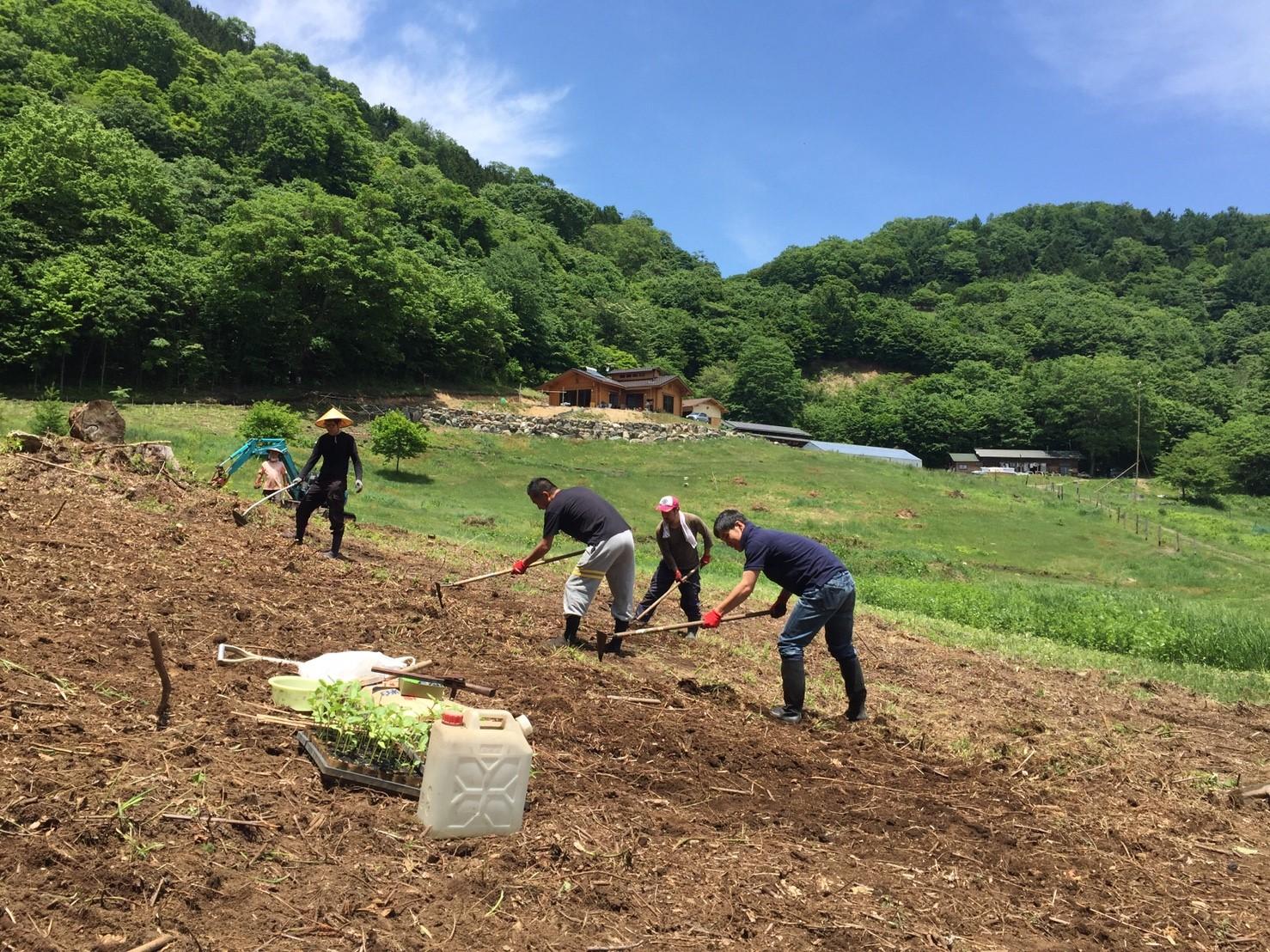 6d50a9ce8623f5214258e1cdb1a39638 - DASHA村の様なプロジェクト(群馬県神流町農場)
