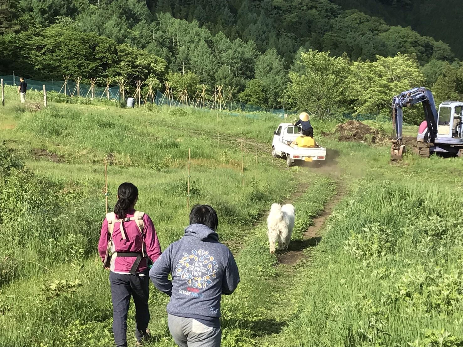 9245a9ecf6f426c6e2fc1a78d611f423 - DASHA村の様なプロジェクト(群馬県神流町農場)