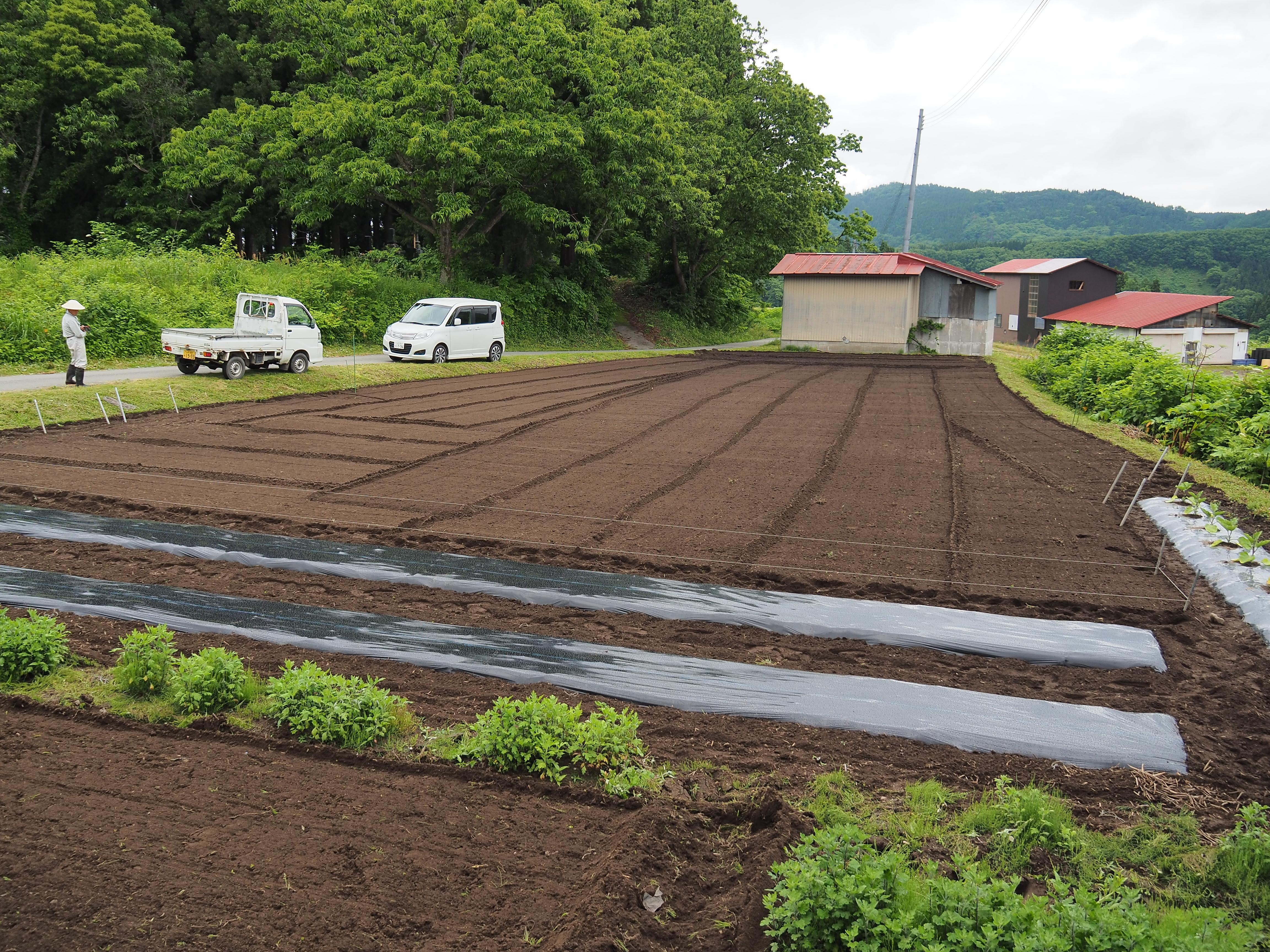 P6170004 - 山形県戸沢村での農業イベント