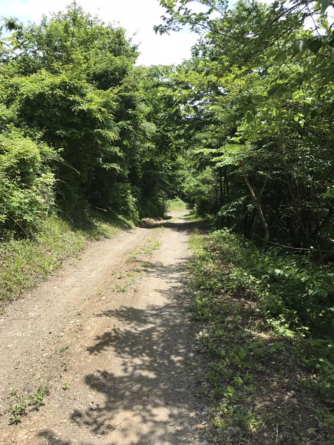 d0d6be1647c17b21f7c6159def9b47d2 - DASHA村の様なプロジェクト(群馬県神流町農場)