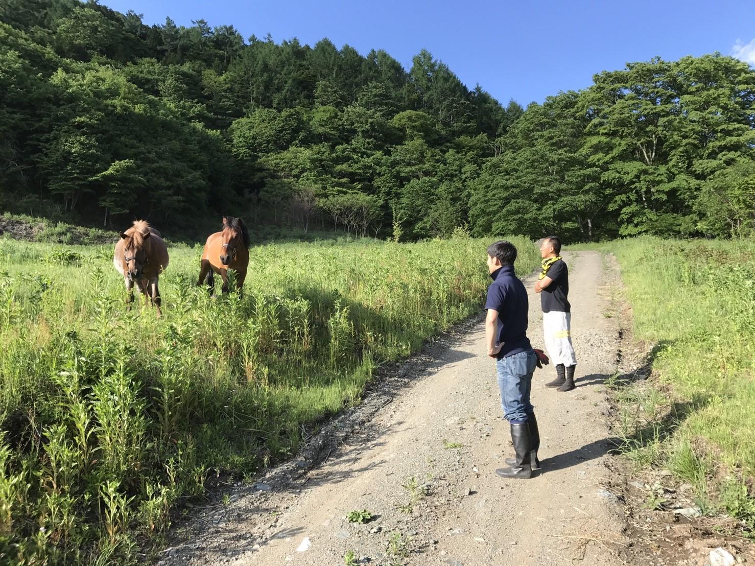 e4e61c5038a323c9dca60323d4bbfab8 - DASHA村の様なプロジェクト(群馬県神流町農場)