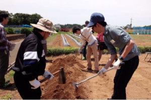 第15回農業体験交流会