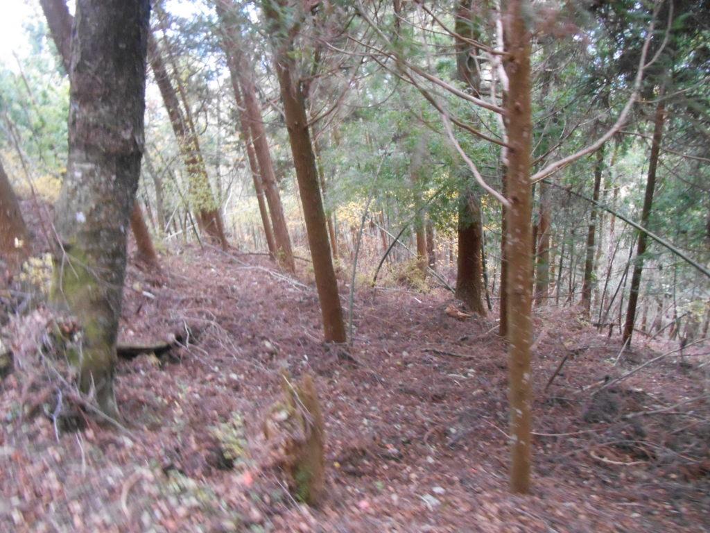 DSCN2203 1024x768 - 平成30年『平成最後の秋』に巡る阿波忌部女神ツアー~日本の女神の源流を訪ねて~