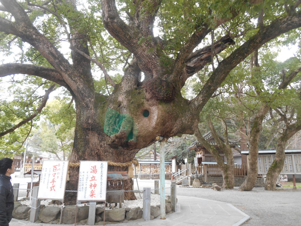 DSCN3639 1024x768 - 平成30年『平成最後の秋』に巡る阿波忌部女神ツアー~日本の女神の源流を訪ねて~