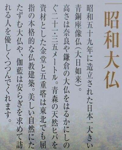 E99D92E9BE8DE5AFBA8 - 昭和大仏にて大護摩祈祷会