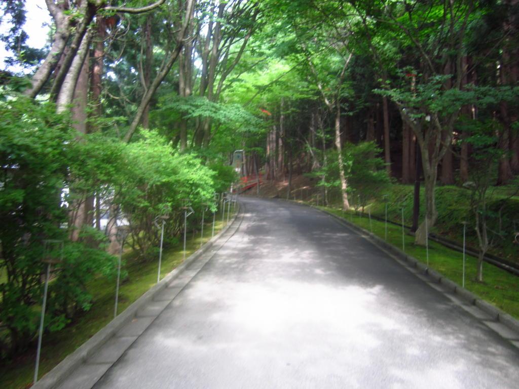 IMG 1051reaaa 1024x768 - 昭和大仏にて大護摩祈祷会