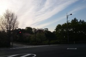 IMG 20140411 063838 1024x1024 300x200 - 第5回AoMoLink〜赤阪〜勉強会&交流会開催