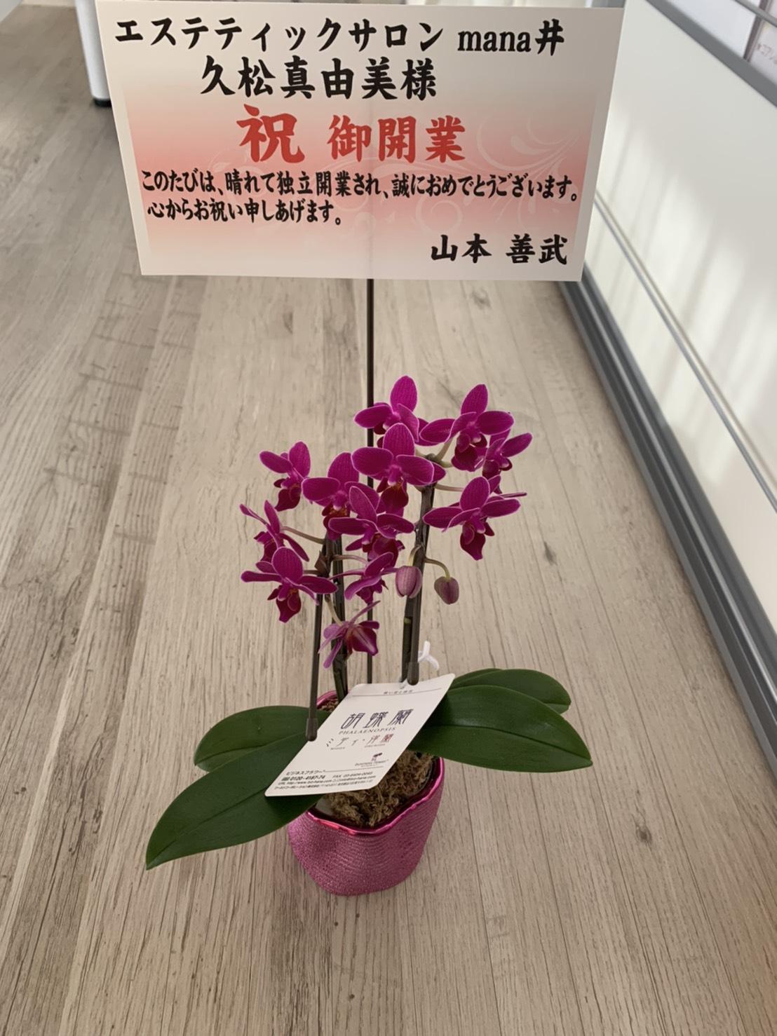 S  100352015 - エステティックサロン mana井さんOPEN